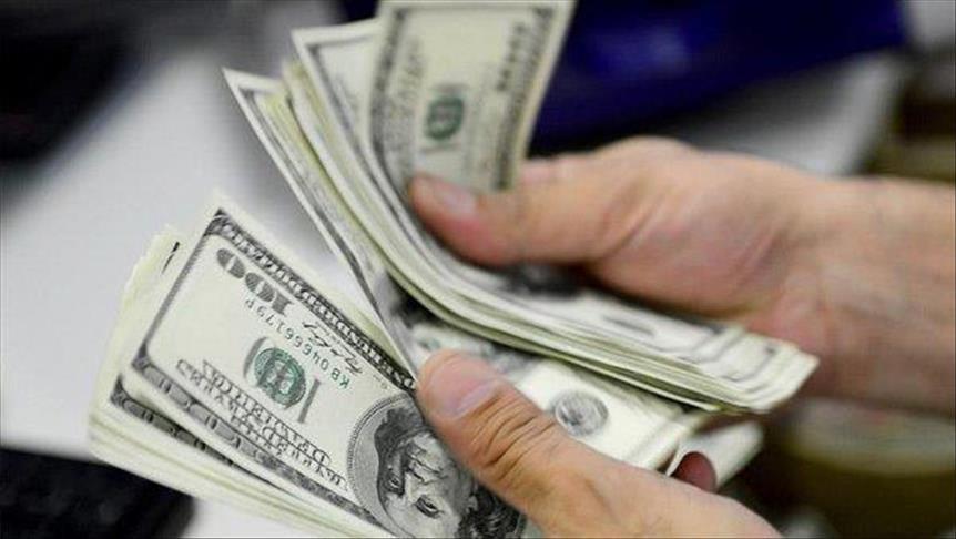 وزارة المالية : تثبت سعر الدولار الجمركي على معدلاته الحالية 16 جنيها لنهاية يونيو