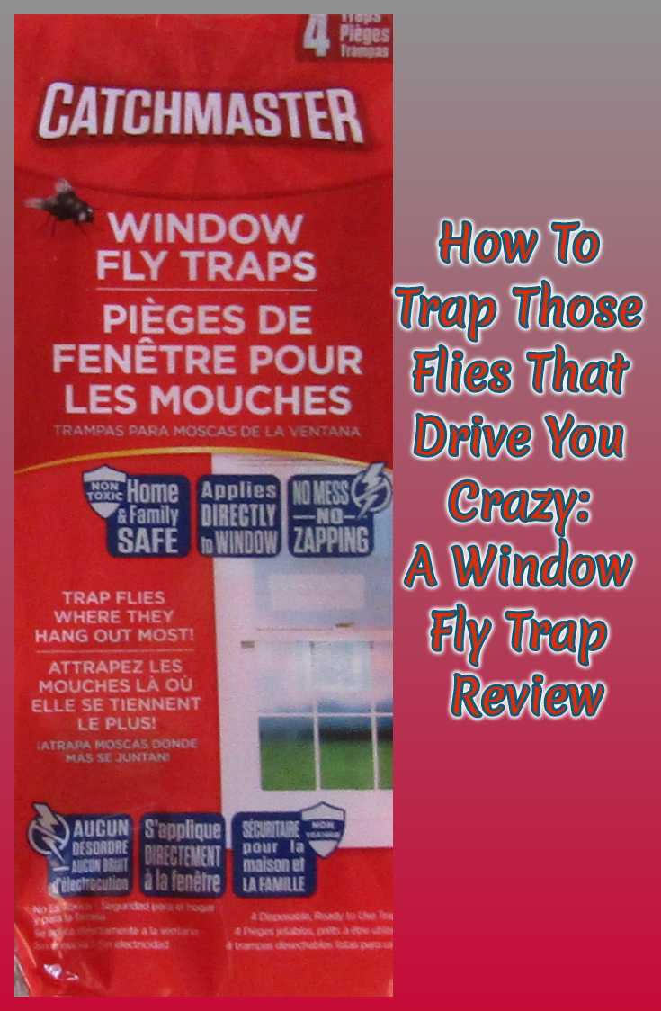 How To Trap Those Flies That Drive You Crazy: A Window Fly Trap Review