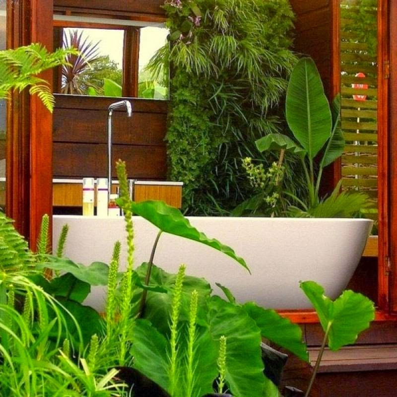 Modern Bathroom Decorating Ideas with Plants and Flowers on front yard design with flowers, bathroom tile with flowers, backyard design with flowers, interior design with flowers, bathroom sinks with flowers,