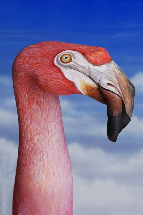 06-Flamingo-Guido-Daniele-Body-Painting-www-designstack-co