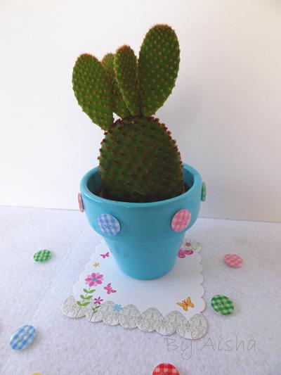 Cactus reto pinterest