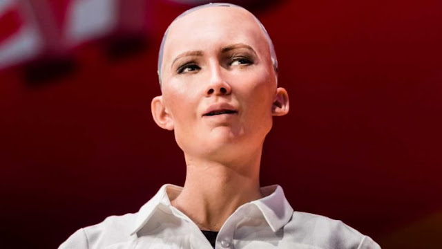 La robot Sophia quiere tener una carrera y familia