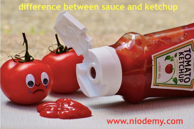 difference between sauce and ketchup
