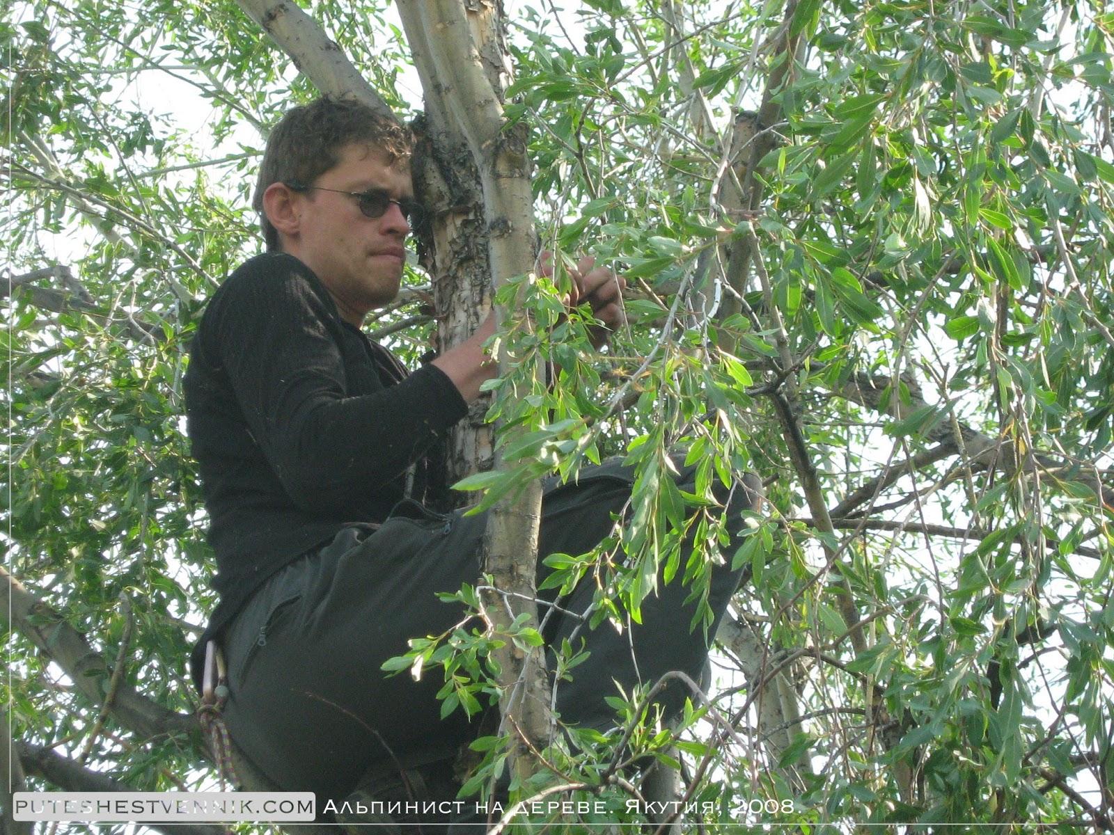 Альпинист закрепляет аварийный запас продуктов на дереве
