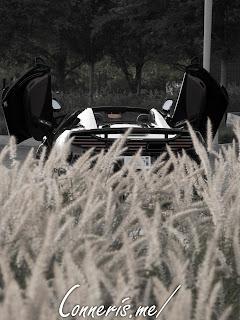 McLaren 12C Grass Rear