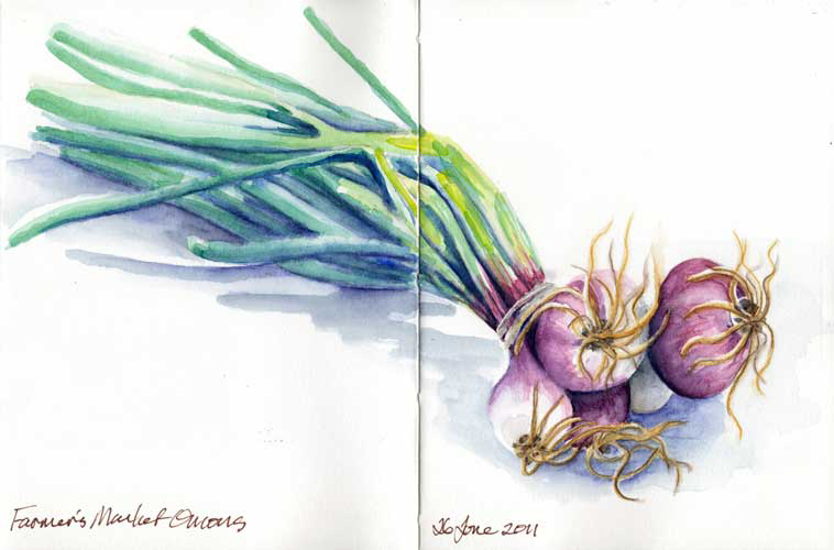 Green Onion Sketch Here s a watercolor sketch ofGreen Onion Sketch