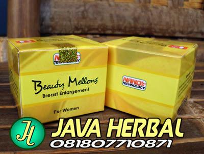 beauty mellons obat herbal alami untuk memperbesar payudara