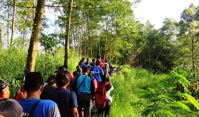 Rangkaian Kereta Manusia di Jalur Pendakian Merapi via Kinahrejo