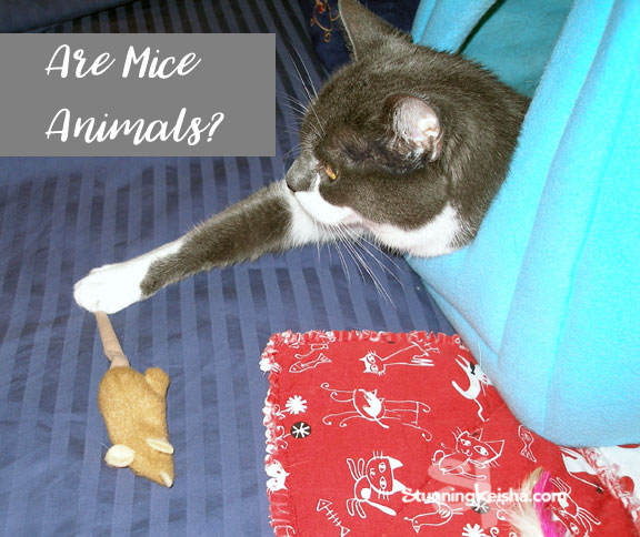 Are Mice Animals?