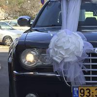 קישוט לרכב חתונה