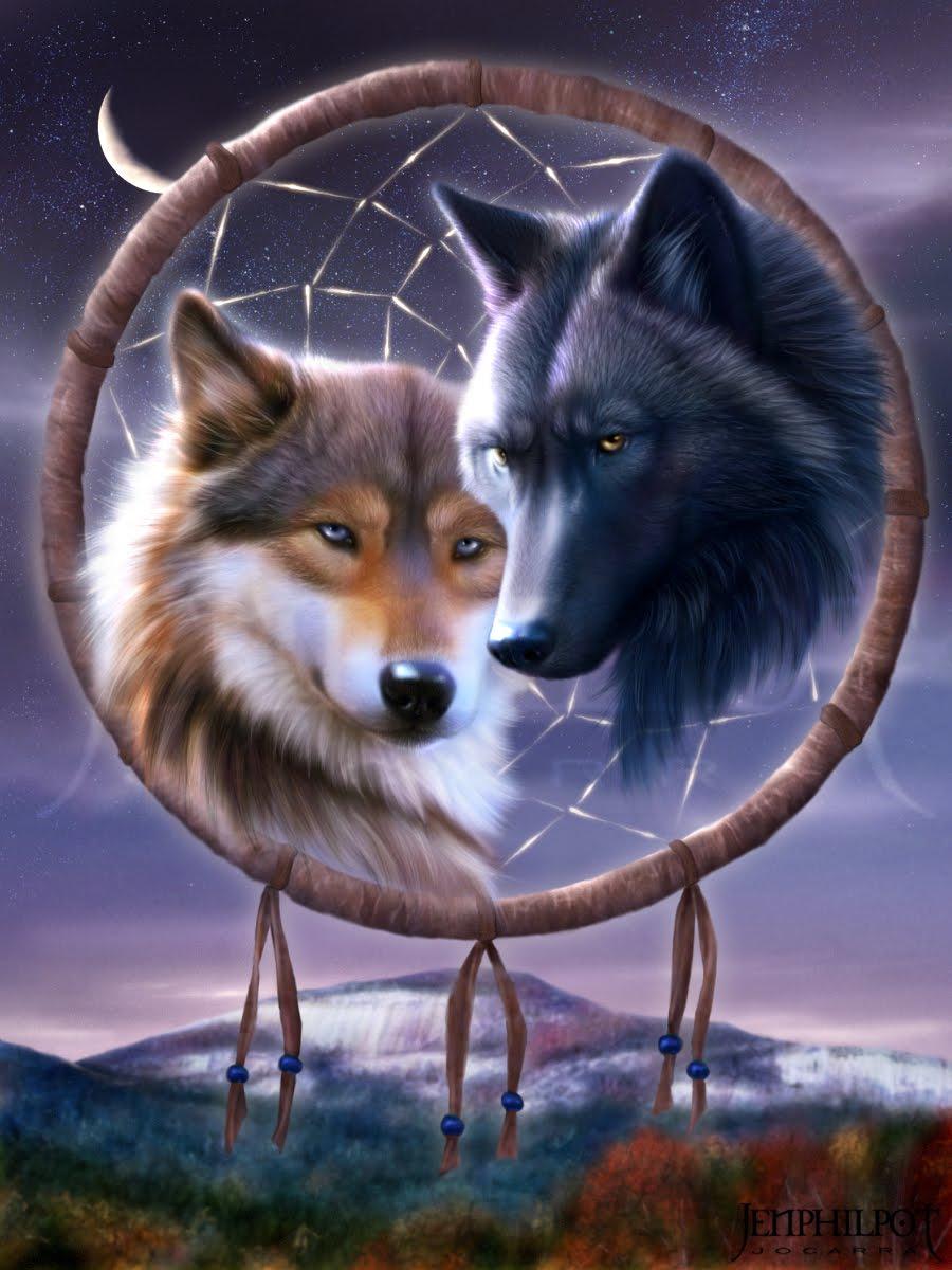 dreamcatcher native wolf spirit wallpaper - photo #13