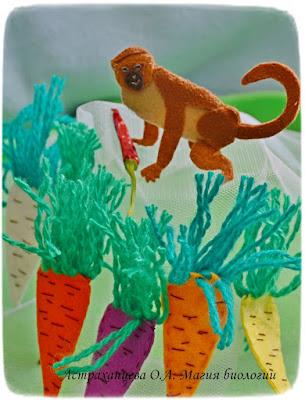 селекция, изодомики своими руками, пальчиковый театр, Мартышка, сорта моркови