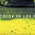 EL COLOR DE TUS DIAS | Cortometraje