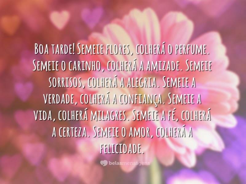 Belas Frases De Boa Tarde: ***GALERIA DE TELAS E PAINEL