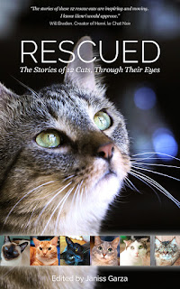 Cover of Rescued: The Stories of 12 Cats Through Their Eyes