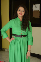 Geethanjali in Green Dress at Mixture Potlam Movie Pressmeet March 2017 087.JPG