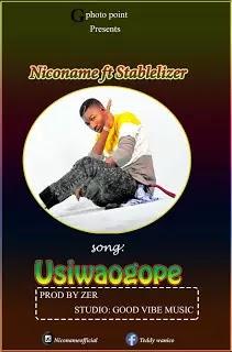 Download Audio | Niconame Ft Stablelizer - Usiwaogope
