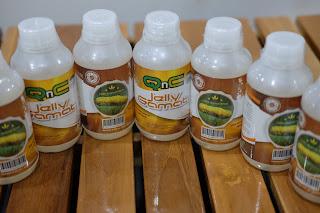 Cara Mengobati Gatal Pada Kulit Karena Jamur