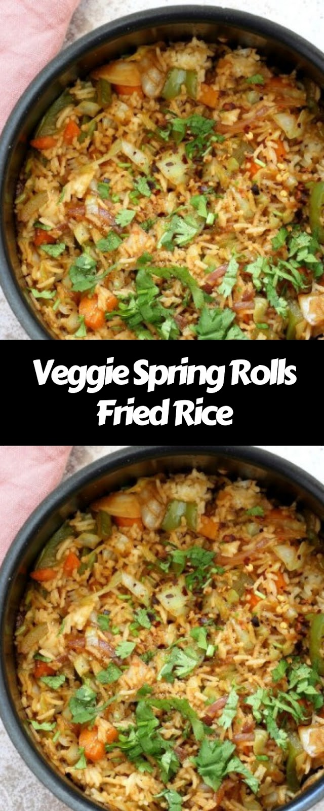 Veggie Spring Rolls Fried Rice