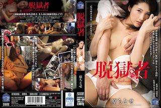 SHKD-659 Hara Chitose Jailbreak's Original Chitose