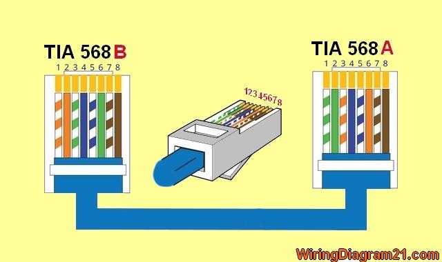 Trailer Wiring Codes Kawasaki Klr650 Color Wiring Diagram Iv 6