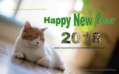 New Year 2018 Wallpaper