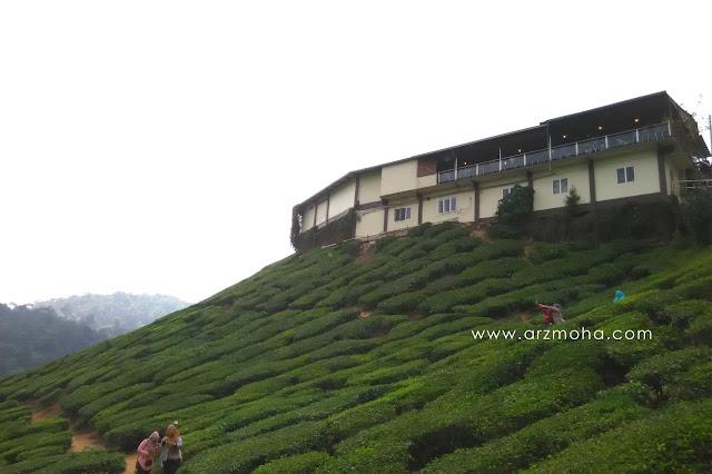 tea house, cameron valley, ladang teh, cameron highlands, pahang, cuti cuti malaysia, permandangan, photography, ladang teh tanah rata,