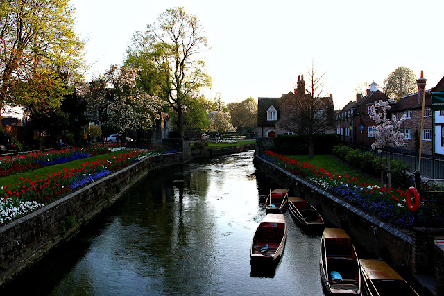 Canterbury in the Spring