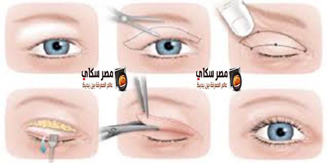 كيفية العناية بالحواجب والجفون والرموش Eyebrows and eyelids Care Eyelashes