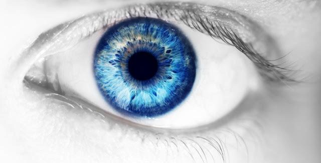 Shkencëtarët kultivojnë retinë njerëzore në enë laboratorike, shpresë për kurimin e sëmundeve të syve