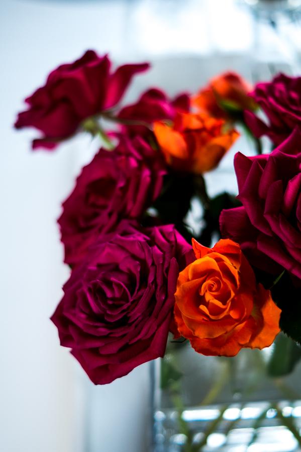 Blog + Fotografie by it's me! | fim.works | Geburtstagsblumen in Knallfarben | aufgeblühte Rosen in Pink und Orange
