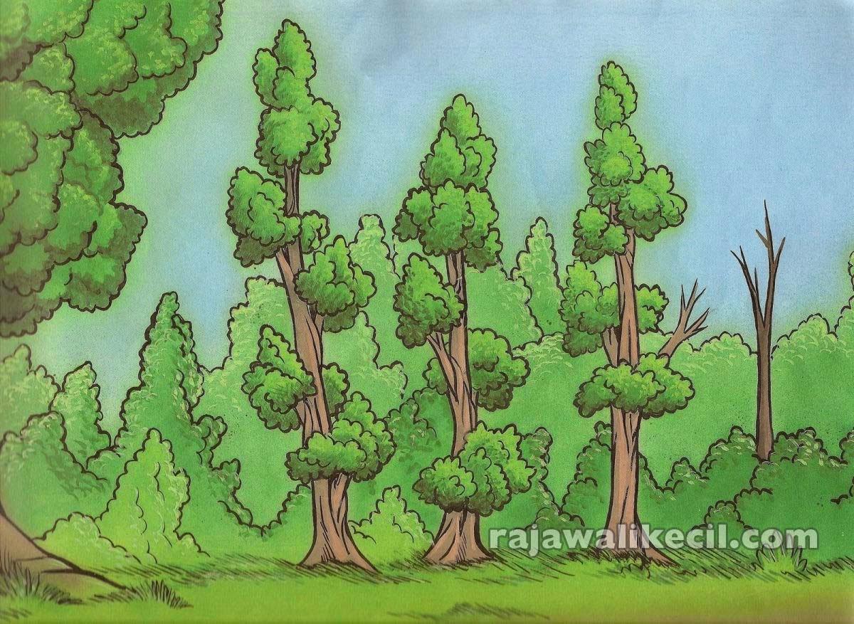 Gambar Ilustrasi Pohon Cemara