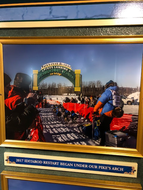 When the Iditarod race started in Fairbanks due to low snow in Anchorage (Source: Pike's Landing)