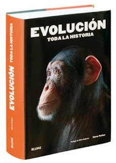 Evolución Toda la historia
