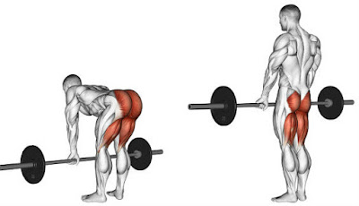 romanian deadlift,deadlift position,workouts for strong back