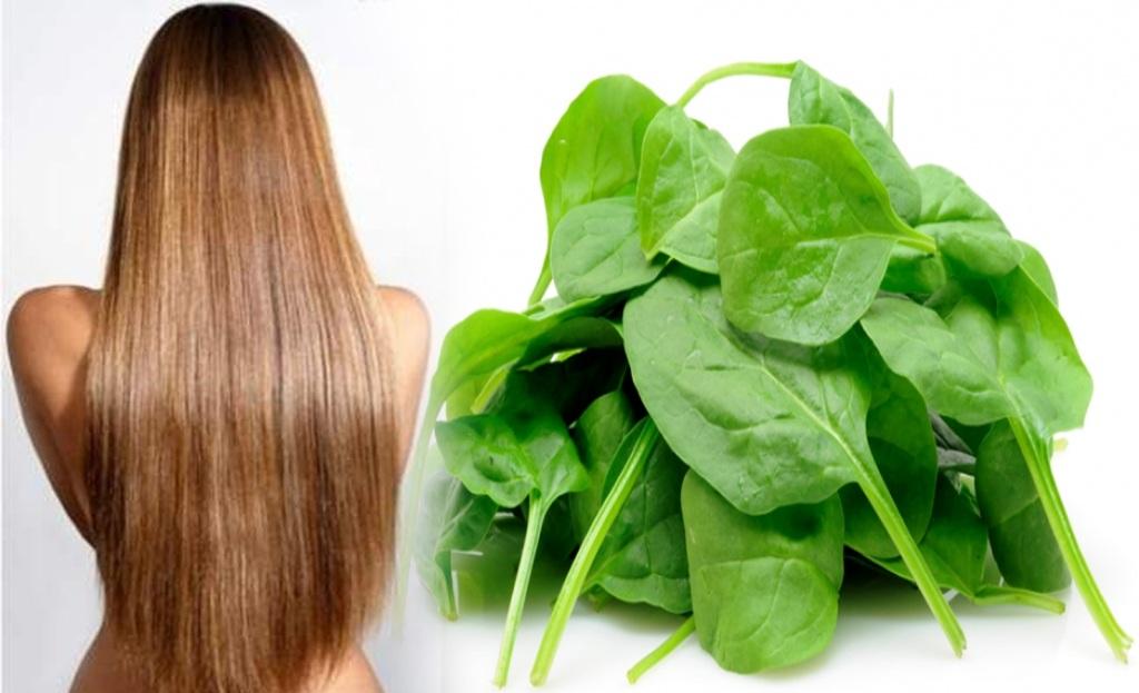 Manfaat Menggunakan Bayam Untuk Pertumbuhan Rambut