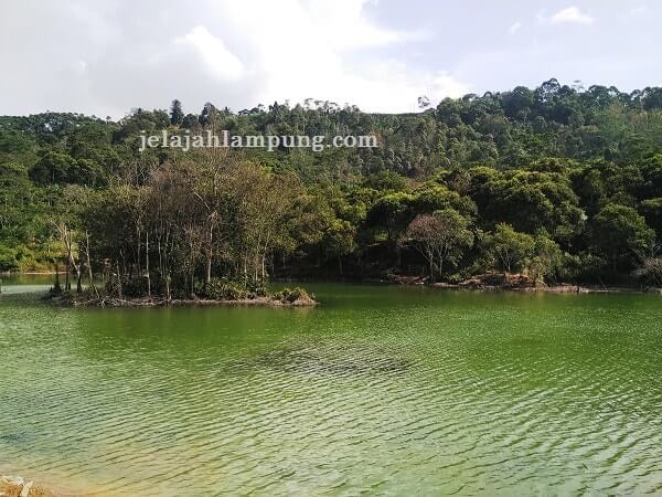 Danau Hijau Ulubelu Tanggamus