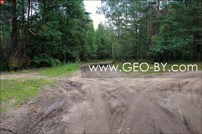 Лесной перекресток