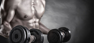 whey protein, kreatin, suplementi prodaja ogistra. suplementi povoljno.trening. misicna masa,prodaja suplementacije., velike ruke.bench press