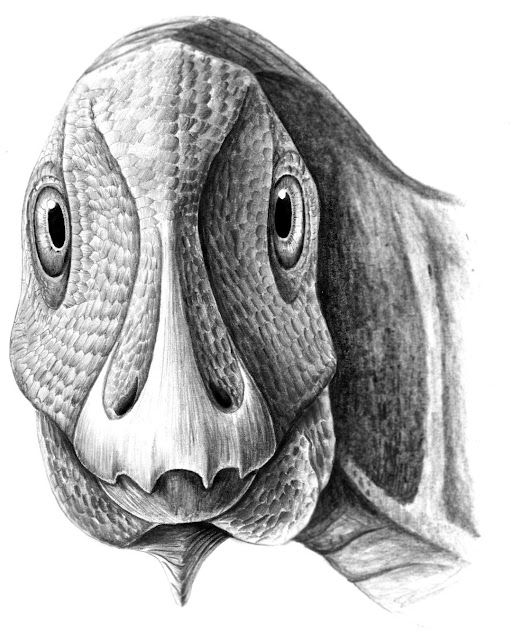 First fossil facial tumor discovered in a dwarf duck-billed dinosaur from Transylva
