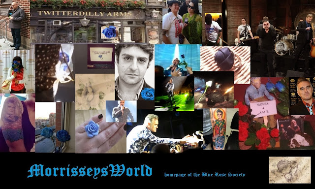 Image result for morrisseysworld