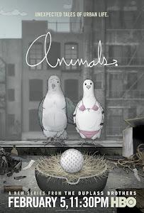 Animals. Poster