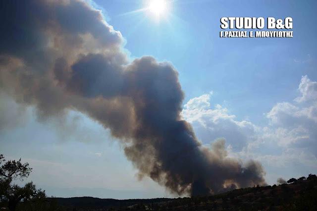 72 δασικές πυρκαγιές σε 24 ώρες σε όλη τη χώρα