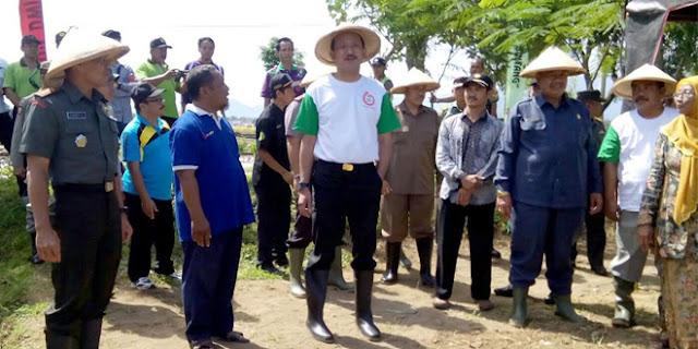 Panen Padi Organik dan Sarasehan Petani Bersama Bupati Ponorogo