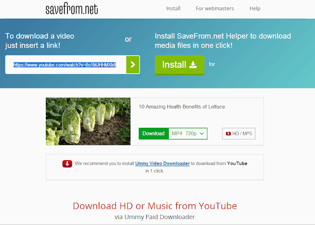 How to download any video from YouTube without any Software - web4newbies.com