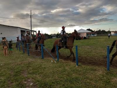 """""""Hoje, na Bahia, o criatório de Campolina está entre os melhores do Brasil"""", afirma o juiz mineiro Guilherme Zagnoli, da associação brasileira, na I Feira Agropecuária de Alagoinhas"""