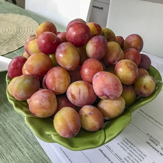 plommon, plums