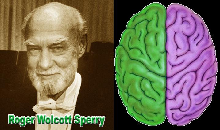 Roger W. Sperry sang penemu otak kiri dan otak kanan