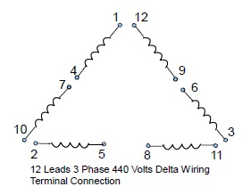 12 Leads Terminal Wiring Guide For Dual Voltage Delta Connected AC