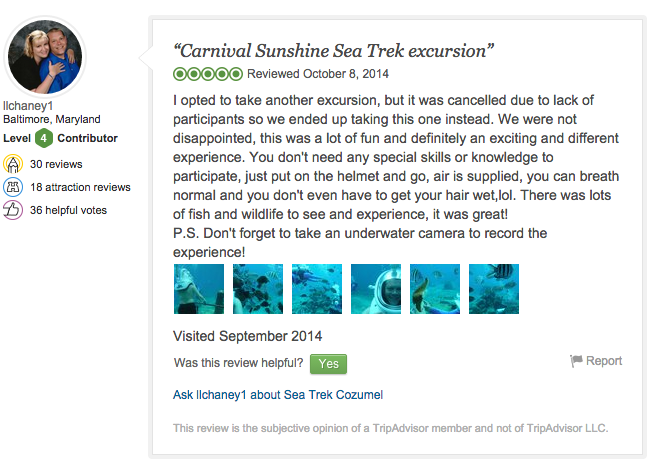 Sea TREK Trip Advisor review